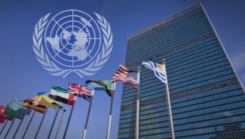 """ООН награждава тръст на Фондация """"Америка за България"""" за социални ..."""
